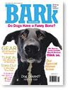 Bark_newmag31